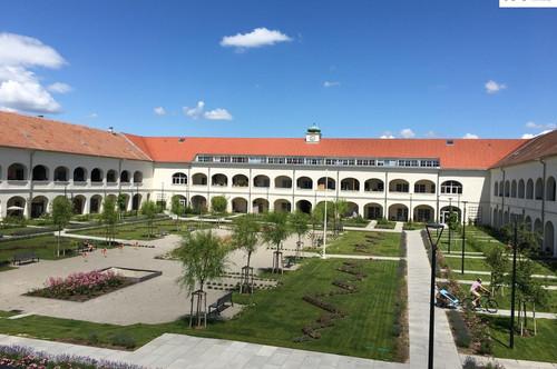 Erstes Monat MIETFREI!! Ihr BÜRO im Schloss Neusiedl - Haus 1