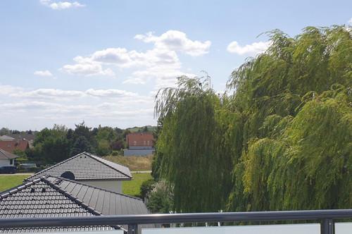 Schöne Freiflächen aber so gut wie KEINE Gartenarbeit-GERASDORF BEI WIEN!