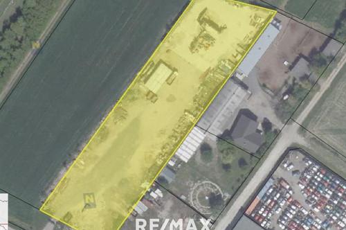 Attraktiver Betriebsbaugrund in Höflein