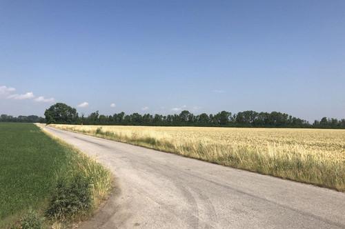 EUR 55.-/m² - Wiennähe! Industriegrundstück 20.000 m² - 100.000 m²