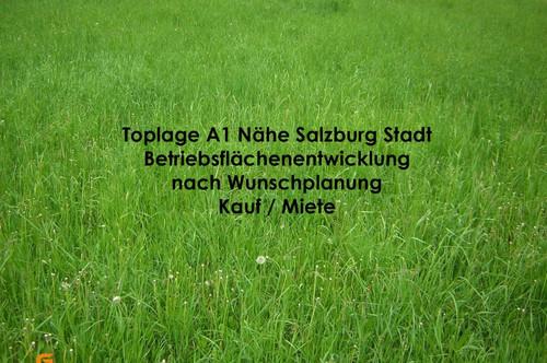 TOPLAGE NÄHE SBG STADT- Development 21.000 m² Betriebsgebiet