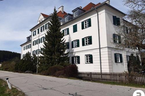 Generalsanierte 2-Zimmer-Wohnung mit Autoabstellplatz - Provisionsfrei für den Käufer!