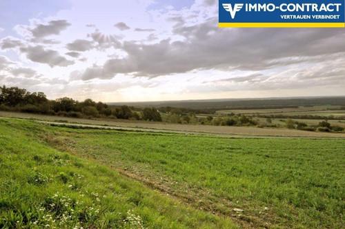 Traumlage in den Weinbergen - Baugenehmigung nach Anbau der Weinreben!