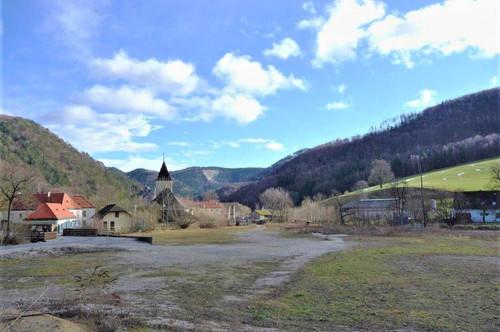 LETZTER schöner ebener Baugrund (teilbar) für Naturliebhaber in Furth an der Triesting