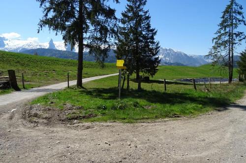 Verkauf einer Grundstücksparzelle in Voglau/Abtenau KG Rigaus Gst. Nr. 987