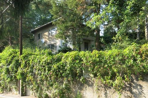 SUMMER SPECIAL! Rarität am Wolfersberg - Eck-Bau-Grundstück / Neubau-Potential für 2 Luxus-Villen /Apartmenthäuser