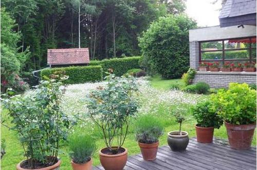 Idyllische Traumlage Leechwald, wunderschönes Anwesen mit großem sonnigem Grundstück