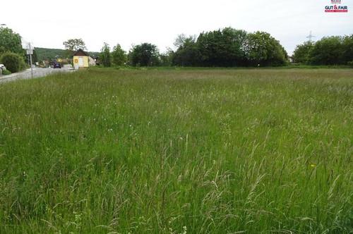 RESERVIERT! Achtung Bauträger! Grundstück in Enzesfeld-Lindabrunn