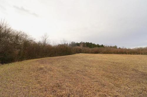 Grünland mit Wald und landwirtschaftlicher Nutzung!