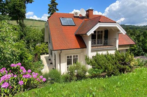 Sonniges Einfamilienhaus mit Weinbergblick