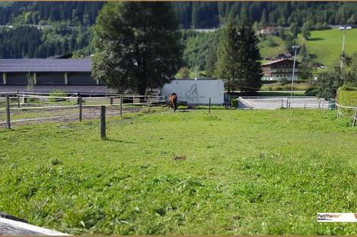Fast ebener Baugrund in Bad Gastein
