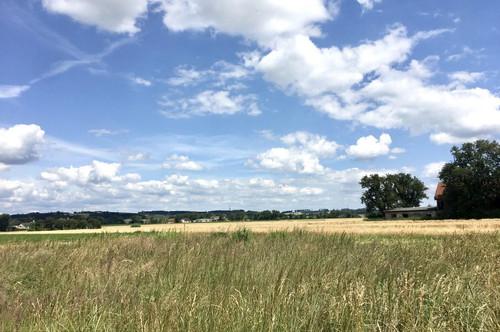 Sehr schönes Grundstück am Ströblberg in Gunskirchen