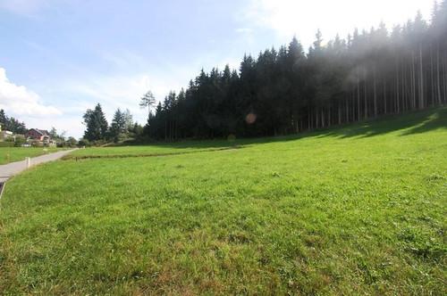 Sonnige Baugründe in der Gemeinde Stockenboi