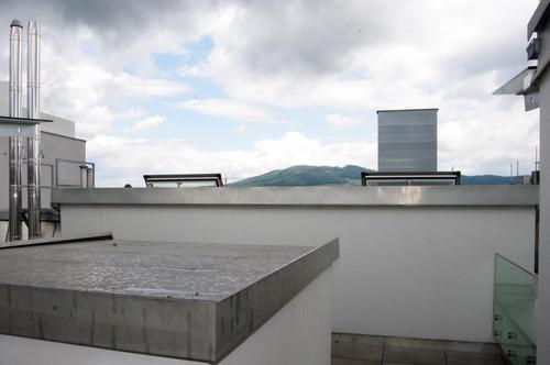 Maisonette im Altbau mit cooler Terrasse über den Dächern von Linz