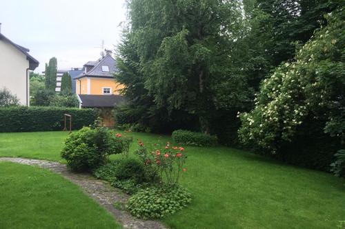 Ruhiges Büro in Josefiau (Zentrumsnähe - und doch im Grünen) - PROVISIONSFREI