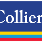 Colliers International Hamburg profilbild
